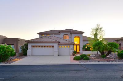 Saddlebrooke Single Family Home For Sale: 37618 S Hill Side Drive