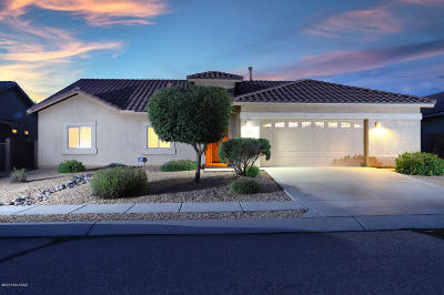 Tucson Single Family Home For Sale: 3663 E Northern Dancer Road