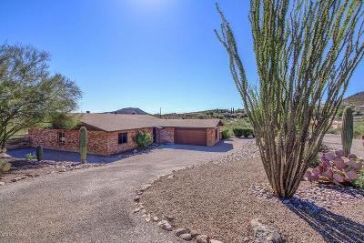 Tucson Single Family Home For Sale: 1100 N Calle Gardenias