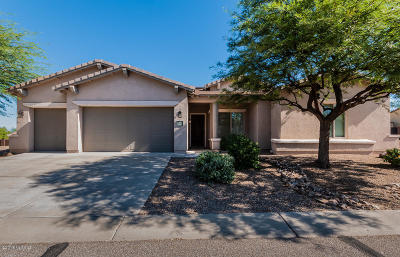 Vail Single Family Home Active Contingent: 9927 S Camino De La Calinda