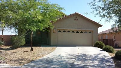 Marana Single Family Home Active Contingent: 11702 W Stone Hearth Street
