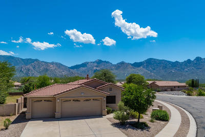 Oro Valley Single Family Home Active Contingent: 13352 N Wide View Drive