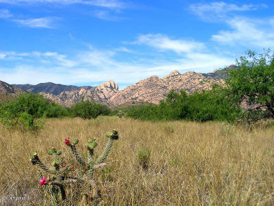 Cochise Residential Lots & Land For Sale: 80 Ac On Ironwood & Stronghold Rd Road #1