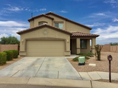 Marana Single Family Home Active Contingent: 14295 N Bronze Statue Avenue