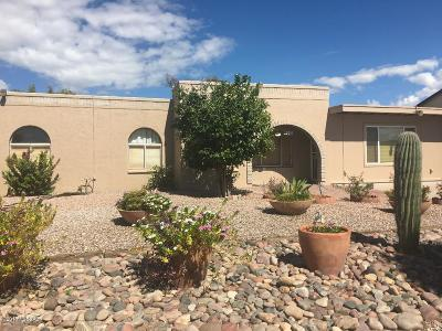 Tucson Single Family Home For Sale: 4140 W Magee Road