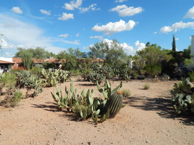 Green Valley Residential Lots & Land For Sale: 505 S Paseo Solaz #50