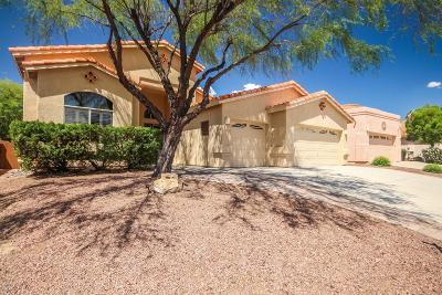 Oro Valley Single Family Home For Sale: 650 W Sendero Claro