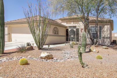 Marana Single Family Home For Sale: 12859 N Eagle Mesa Place
