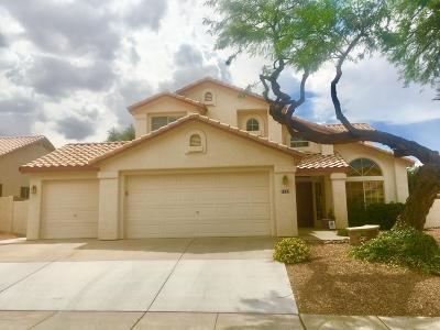 Tucson Single Family Home For Sale: 1133 S Desert Senna Loop