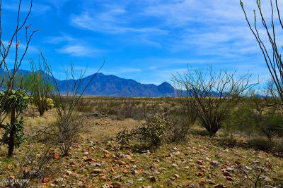 Green Valley Residential Lots & Land For Sale: 3205 S Corte Amarilla #40