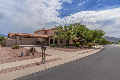 Oro Valley Single Family Home For Sale: 12922 N Eagleview Drive