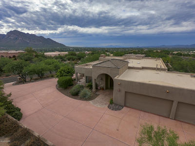 Oro Valley Single Family Home For Sale: 10825 N Summer Moon Place