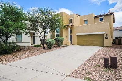 Sahuarita Single Family Home For Sale: 14209 S Via Abarca