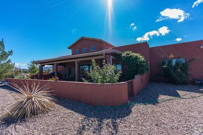 Patagonia Single Family Home For Sale: 114 Red Mountain Court