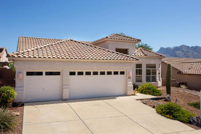 Tucson Single Family Home For Sale: 2344 W Noble Heights Drive