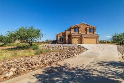 Sahuarita Single Family Home For Sale: 17773 S Deer Lodge Court