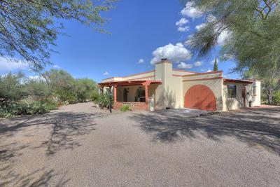 Green Valley Single Family Home For Sale: 601 S Corpino De Pecho