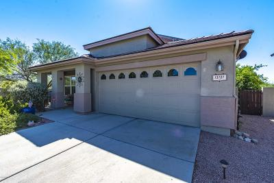 Oro Valley Single Family Home Active Contingent: 13121 N Tanner Robert