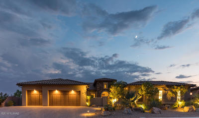 Pima County, Pinal County Single Family Home For Sale: 66557 E Wilderness Rock Drive