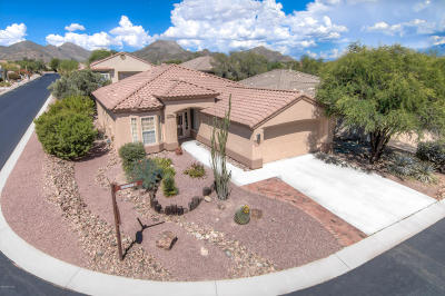 Marana Single Family Home For Sale: 12957 N Burrobush Loop