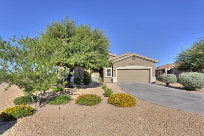Tucson Single Family Home Active Contingent: 3706 S Desert Motif Road
