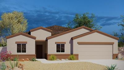 Tucson Single Family Home For Sale: 6222 S Water Fountain Drive