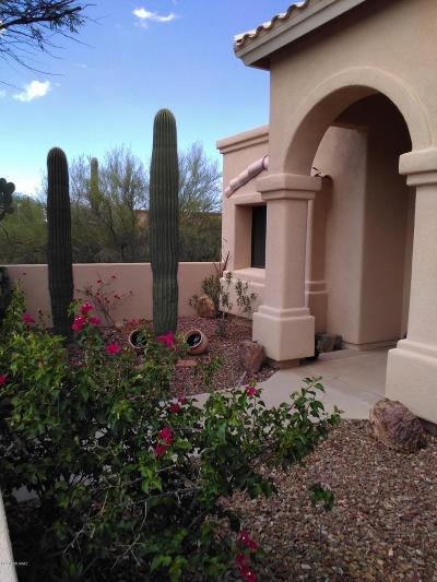 Tucson Single Family Home For Sale: 2800 N Grannen Road