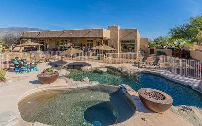 Single Family Home Active Contingent: 12341 E Goldpan Place
