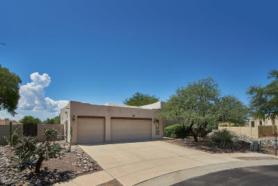 Oro Valley Single Family Home For Sale: 191 W Saddletree Place