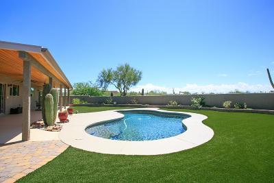 Tucson Single Family Home For Sale: 730 E Rudasill Road