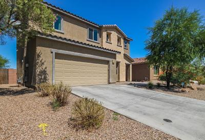 Sahuarita Single Family Home Active Contingent: 1029 E Empire Canyon Lane
