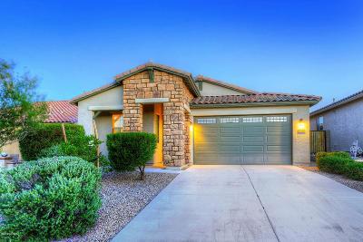 Marana Single Family Home For Sale: 12111 N Golden Mirror Drive