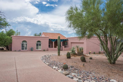 Tucson Single Family Home For Sale: 1102 E Paseo Pavon