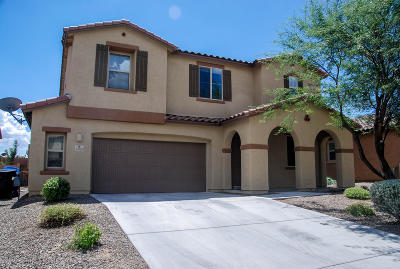 Sahuarita Single Family Home For Sale: 14398 S Camino El Galan
