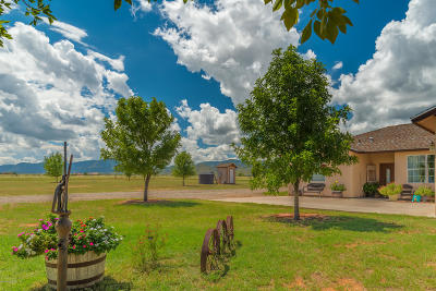 Cochise Single Family Home For Sale: 105 W Ironwood Road