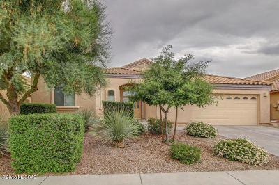 Tucson Single Family Home For Sale: 7823 E Jack Oak Road