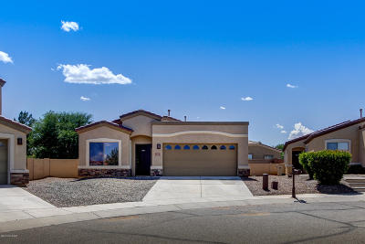 Sahuarita Single Family Home For Sale: 328 E Camino Rancho Redondo