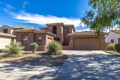 Marana Single Family Home For Sale: 11629 W Emmer Drive