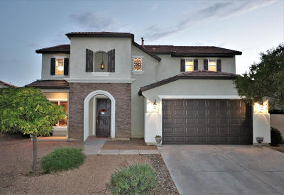 Sahuarita Single Family Home For Sale: 603 W Vuelta Buril