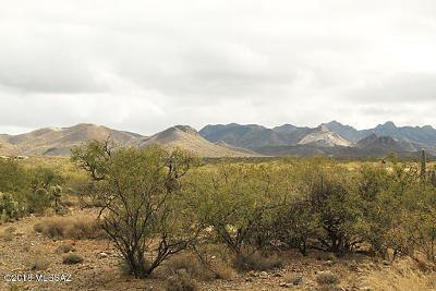 Tucson Residential Lots & Land For Sale: 2107 N Sandario Road