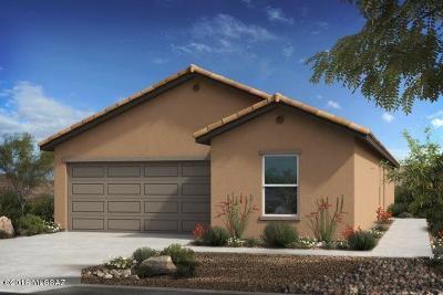 Tucson Single Family Home For Sale: 9602 S Trapper Ridge Drive