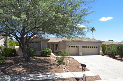 Oro Valley Single Family Home For Sale: 11258 N Mountain Breeze Drive