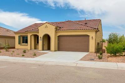 Marana Single Family Home For Sale: 14227 N Lava Falls Trail S