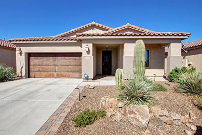 Marana Single Family Home For Sale: 4464 W Harmony Ranch Place