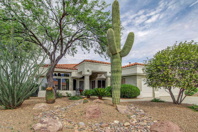 Oro Valley Single Family Home For Sale: 14369 N Lost Arrow Drive
