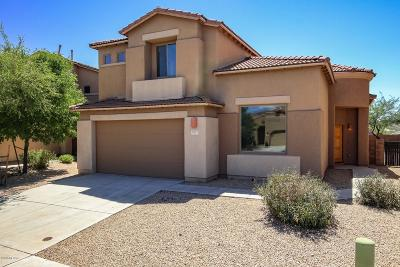 Vail Single Family Home For Sale: 10412 S Painted Mare Drive