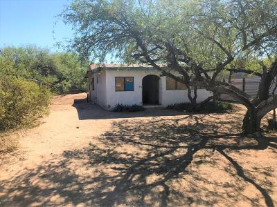 Tucson Single Family Home For Sale: 1634 N Sonoita Avenue