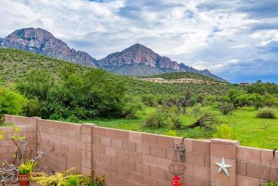 Oro Valley Single Family Home For Sale: 11137 N Rams Horn Trail