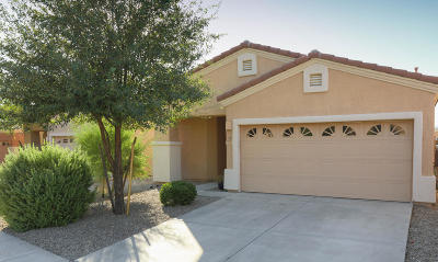 Oro Valley Single Family Home For Sale: 2227 E Stone Stable Drive