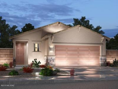 Sahuarita Single Family Home For Sale: 892 E Bottomlands Lane
